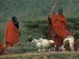 Shepherds in Tanzania