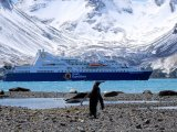 Ocean Diamond Antarctica Cruise