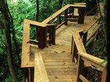The Lodge at Pico Bonito - Walkways