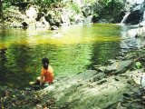 Swimming Hole in the rainforest