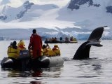 Quark Expeditions - Zodiac Excursion