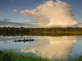 Ecuadorian Amazonia Luxury Expedition