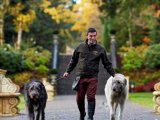 The Irish Wolf Hounds at Ashford Castle