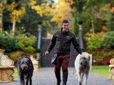 The Irish Wolf Hounds at Ashford Castle