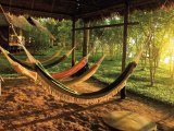 Relax on a Hammock near the river edge