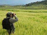 Birdwatching in Lake Titicaca, Titilaka Lodge