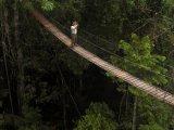 The Canopy Walk, Inkaterra Reserva Amazonica