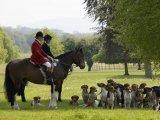 Horses & Hounds