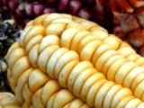 Andean Corn at the market