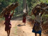 Tribal women in Periyar Tiger Reserve