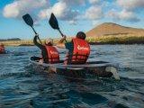 M/C Endemic - Clear Bottom Kayaks