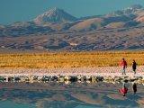 Excursion to the Salar de Atacama, Tierra Atacama