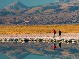 Lagoon in Atacama Desert