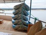 Sea Star Journey - Sun Deck