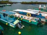 Sea Star Journey- Port Scene