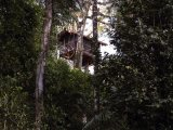 The Canopy Tree House at Inkaterra Reserva Amazonica