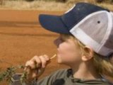 Kids Friendly Safari Stay at Jaci's Lodges