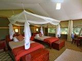 Luxury Tenet at Ishasha Wilderness Camp QENP Uganda