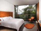 Wayra Room at the Mashpi Lodge