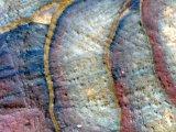 Nature's Canvas - Snd Stone in the Jordanian Desert