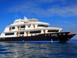 The Petrel Catamaran