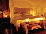 Suite Tambopata