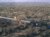 Aerial Picture of the Blue Train