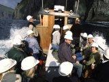Vestmanna Sea Cliffs Cruise - Faroe Islands