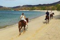 Honeymoon in a Tropical Paradise