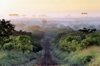Uganda Discovery Journey