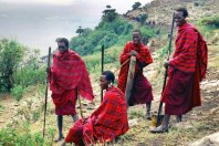 Tanzania Classic Safari Experience