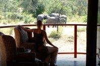 Shumbalala Game Lodge - Thornybush Nature Reserve