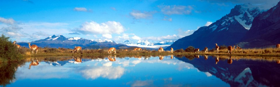 Chile; Land of Natural Diversity