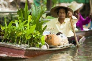 Thailand Family Experience