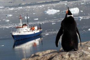 Classic Antarctica Cruise aboard the Ushuaia