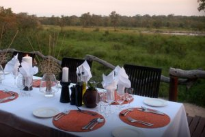 Simbambili Game Lodge - Sabi Sand Game Reserve