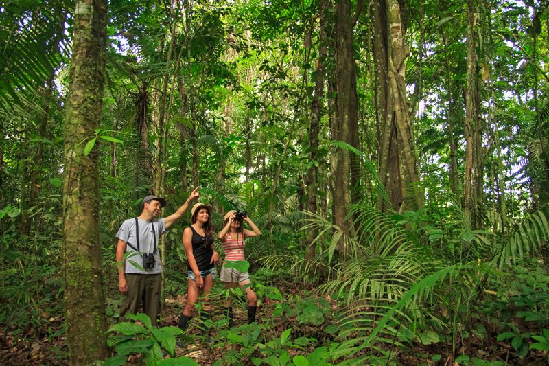 Ecuadorian Amazonia Luxury Expedition
